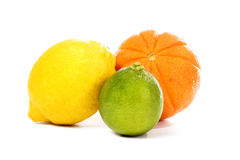 citrus Arkivfoton