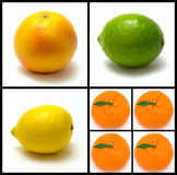 Citrus. Collage of colorfull fruits on white background royalty free stock photos