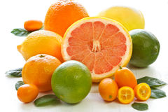 Citrus. Stock Images