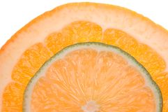Citrus. Slice of orange and slice of lime Stock Photos