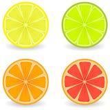 citrus royaltyfri illustrationer