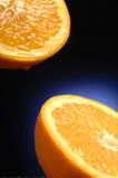 Citrus 2 Royalty Free Stock Photo