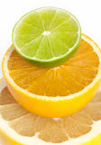 Citrus. Grapefruit, orange and limette close up Royalty Free Stock Image