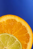 Citrus 3 Royalty Free Stock Photos