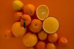 Citrus Arkivbilder