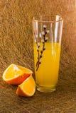 Citrus14 Zdjęcia Stock