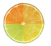 Citrus - 4 in 1. A composite shot of four citrus fruit: orange, blood-orange, lime and lemon Royalty Free Stock Images