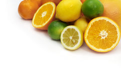 citrus Royaltyfria Bilder