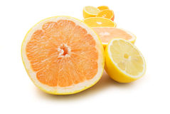 Citrus. Isolated citrus on white background royalty free stock photos