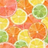 citrus Fotos de archivo