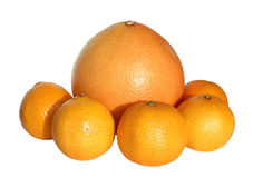 Citrus. Grapefruit and tangerines on a white background Royalty Free Stock Photos