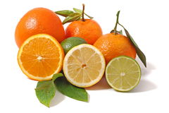 Citrus Stock Photo