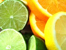 Citrus. Fruit Royalty Free Stock Photos