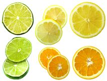 Citrus. Isloated citrus fruit Stock Photos