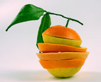 Citrus. Royalty Free Stock Images