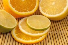 citrus Imágenes de archivo libres de regalías