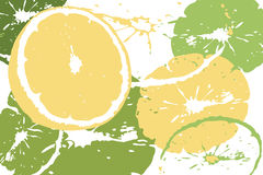 Citrus abstract backdrop Royalty Free Stock Image