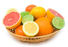 Citrus abundance Stock Photography