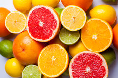 Citrus, apelsin, limefrukt, citron och grapefrukt på en tabell Arkivfoto