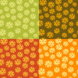 Citrus background Royalty Free Stock Photos
