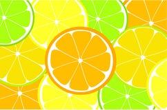 Citrus background Royalty Free Stock Photo
