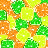 Citrus background Royalty Free Stock Photo