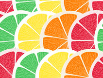Citrus background Stock Image