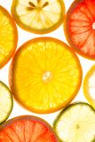 Citrus background Stock Photography