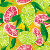 Citrus background. Raster version of vector seamless pattern with citrus Stock Photography