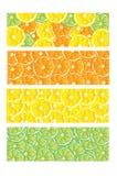 Citrus Fruit Slices Banner Designs. Assorted citrus fruit slices banner designs - oranges, limes and lemons vector illustration