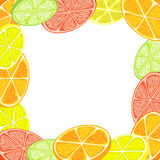 Citrus background Royalty Free Stock Photography