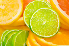 Citrus background Stock Photo