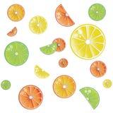 Citrus background with oranges, lemons, limes royalty free illustration