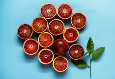 Citrus background pattern with red oranges and green leaves on a blue background. Flat lay Royalty Free Stock Photo