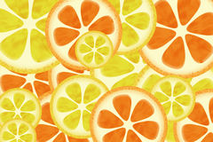 Citrus background pattern. Or textures Stock Images