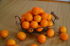 Citrus and background for photography Royalty Free Stock Photos