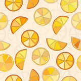 Citrus background vector seamless pattern eps8 Royalty Free Stock Photos