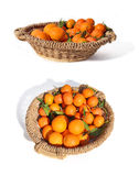 Citrus basket. A mixture of citrus fruits in a big straw basket Stock Photography