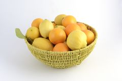 Citrus basket with oranges and lemons Royalty Free Stock Photography