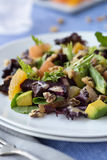 Citrus and Beet Salad Stock Image