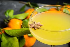 Citrus beverage with spices in margarita glass. Selective focus. Shallow depth of field stock photos