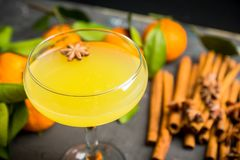Citrus beverage with spices in margarita glass. Selective focus. Shallow depth of field stock photography