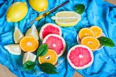 Citrus blandning på blå bakgrund Variation av citrusfrukter Arkivfoton