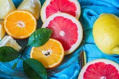 Citrus blandning på blå bakgrund Variation av citrusfrukter Royaltyfri Fotografi