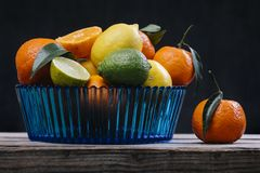 Citrus in blue glass bowl. A beautiful blue ribbed translucent glass bowl filled with a variety of refreshing citrus fruits: tangerines with plant stem and stock images