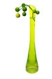 Citrus bouquet. Citrus bouquet in glass vase Royalty Free Stock Photo
