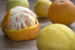 Citrus of Calabria Royalty Free Stock Photography