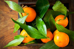 Citrus clementina in box Royalty Free Stock Photography