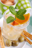 Cocktail with citrus fruit Royalty Free Stock Photos