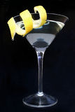 citrus coctail Arkivbilder